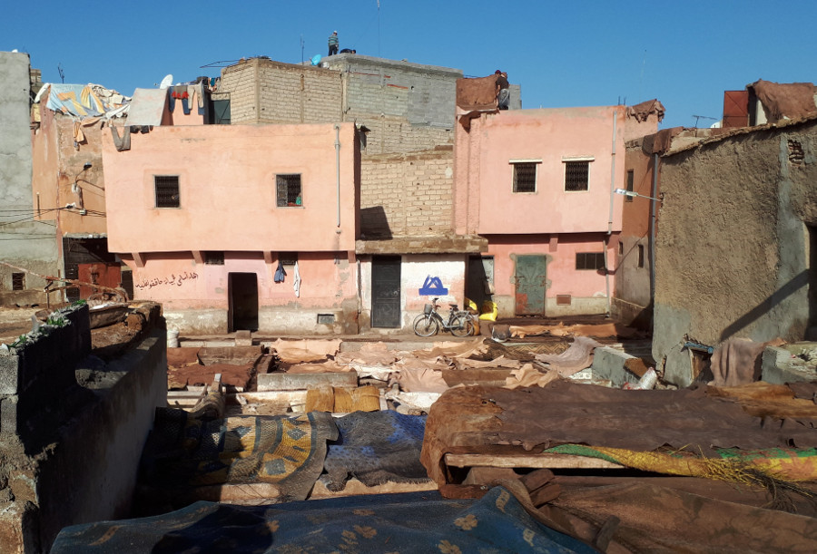 a tannery in Marrakesh
