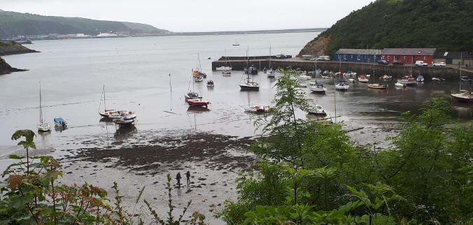 Fishguard at low tide